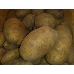 Πατάτα Agria Ολλανδίας 25kg