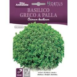 Βασιλικός ψιλόφυλλος Greco a palla σπόροι σε φάκελο